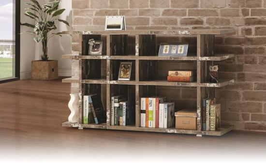 bookcasepgphoto