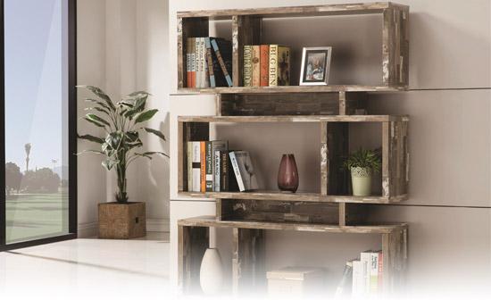 bookcasepgphoto2
